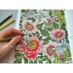 Instagram photo by @colorvscolour via ink361.com