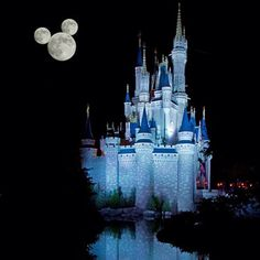 Cinderella's Castle ☆ Walt Disney World, Florida, USA Disney Parks, Walt Disney World, Disney Nerd, Disney Theme, Disney Love, Disney Disney, Disney Stuff, Hades Disney, Disney Magic Kingdom