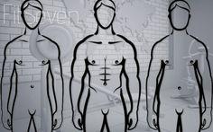 Post image for Somatotipos: tipos de cuerpo