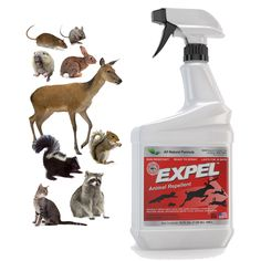 Expel Natural Animal Repellent Spray - 32 oz