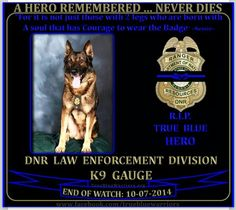 K9 Gauge ~ EOW 10/07/14--thank you for your service... rip.