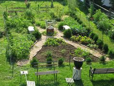Lovely layout for a potager, saving ideas for the new quarter acre I will be gardening soon #garden #garden_inspiration #potager