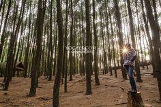Foto #5 (Hutan Pinus Mangunan)