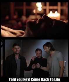 """*cough cough* """"CANON"""" - Stephan Amell, Jensen Ackles, Jared Padalecki, and Mark Sheppard (Arrow & Supernatural)"""