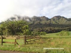 Gorgeous Kipu Ranch on Kauai - home of many film locations #Kauai #Hawaii