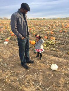 MrsHazleyAndABaby: Pumpkin Patch +  Halloween on the blog