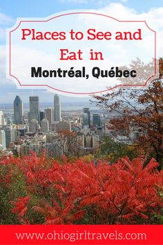 Montréal is a beautiful Canadian city, with many sights to see. Check out this Montréal guide before your trip, which includes transportation in Montréal, places to stay in Montréal, food and drinks to try in Montréal, and things to see while walking around Montréal. Click through to make the most of your time in the city and don't forget to save this pin to your travel board!   Montreal Canada   guide to Montreal   transportation in Montreal   accommodation in Montreal   what to see in…