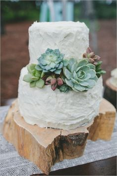 white two-layers succulent wedding cake ideas
