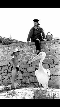 Mykonos and the pelican Corfu Greece, Mykonos Greece, Athens Greece, Greece Photography, History Of Photography, Artistic Photography, Old Time Photos, Mykonos Island, Greek Islands