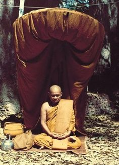 Let nature teach you ~ Ajahn Chah http://justdharma.com/s/qgmrd  The forest is peaceful, why aren't you? You hold on to things causing your confusion. Let nature teach you. Hear the bird's song then let go. If you know nature, you'll know Dhamma. If you know Dhamma, you'll know nature.  – Ajahn Chah  source: http://www.abuddhistlibrary.com/Buddhism/B%20-%20Theravada/Teachers/Ajaan%20Chah/No%20Ajahn%20Chah/Peace.htm