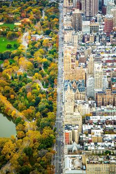 Incredible Contrast Between Two Worlds: The City Vs. Central Park, New York…