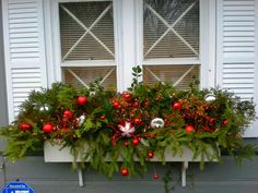 Christmas window box. I made this from clipped pieces of evergreen, holly and…