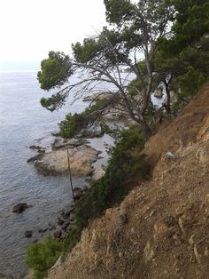 Another Lovely View in #Fenals Costa Brava near Cala Boadella.