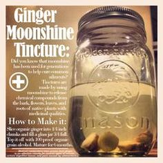 How to Make a Ginger Alcohol Tincture Copper Moonshine Still Kits - Clawhammer Supply Moonshine Kit, Moonshine Still Kits, Homemade Moonshine, Copper Moonshine Still, Apple Pie Moonshine, Moonshine Recipe, Herbal Tinctures, Herbalism, Herbal Tea