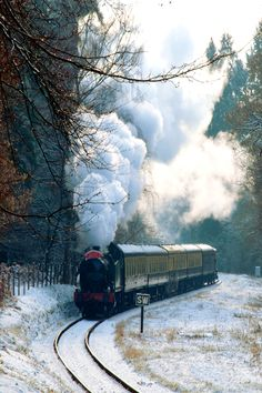 Forest of Dean, England. Didn't know the Hogwarts Express traveled through there. ;)