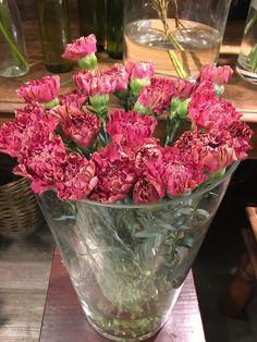 My Flower, Flowers, Raspberry, Fruit, Food, Essen, Meals, Raspberries, Royal Icing Flowers