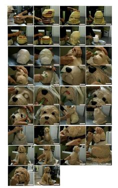 step by step cake Dog kuharka.ru, I believe this is also a video on you tube