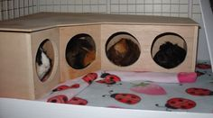 Piggy Condos! SO STINKIN' CUTE! (this was a quick DIY project someone posted in a thread)