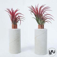 MARTURII plante aeriene in suport turnat CILINDRIC - M23 - https://www.yau.ro/collections/marturii-nunta-si-botez?page=1 - yauconcept - elenatoader