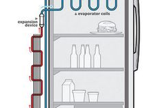 In the refrigeration cycle, there are five basic components: fluid refrigerant; a compressor, which controls the flow of refrigerant; the condenser coils (on the outside of the fridge); the evaporator coils (on the inside of the fridge); and something called an expansion device. Here's how they interact to cool your food.