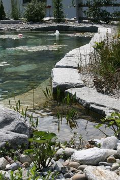 Swimming Pond... Great idea!