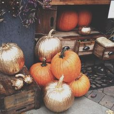 painted pumpkins + metallic | Styled by K A S E Y