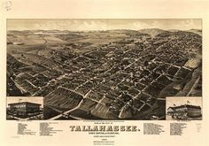 We love Tallahassee because of its simplicity.