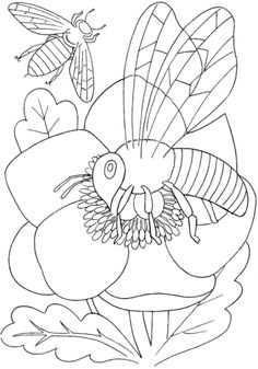 insects and spiders coloring pages. Insects or in Latin is Hexapoda which means it has 6 legs. Insects are the group of animals with the most species or species. Insect Coloring Pages, Spider Coloring Page, Garden Coloring Pages, Butterfly Coloring Page, Online Coloring Pages, Flower Coloring Pages, Animal Coloring Pages, Coloring Pages To Print, Free Printable Coloring Pages
