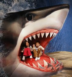 Children sit on a piece of 3D artwork featuring a shark as they pose for a photograph for their family during an exhibition by the Trick Art Museum of Japan at the National Taiwan Science Education Centre in Taipei March 2, 2012.