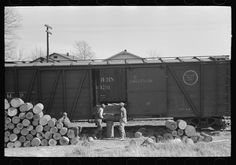 Russell Lee - Loading logs to be made into barrel staves at Tallulah, Louisiana. Loading point, Eudora, Arkansas (1939)