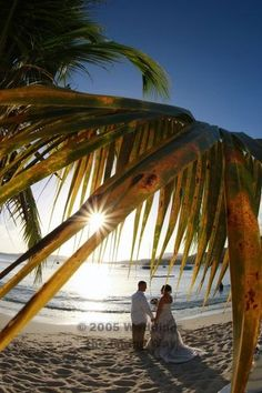 Weddings The Island Way Lindquist Beach Aka Smith Bay Park St Thomas Usvi Wedding Pinterest Stuff And