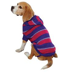 Zack and Zoey Striped Knit Pet Sweatshirt Hoodie - Ultra Violet * Read more at the image link. (This is an affiliate link and I receive a commission for the sales) #Pets