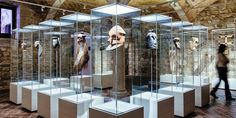 Museu de Cultures del Món, Barcelona. The Museu de Cultures del Món (Museum of World Cultures) in Barcelona presents outstanding works from around the world in medieval Catalan buildings. Architecture and art are set off perfectly thanks to the ERCO lighting tools Optec and Pollux.