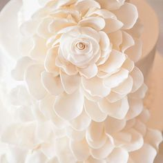 Time for a . Wedding Cakes, Candle Holders, Candles, Photo And Video, Weddings, Studio, Rose, Flowers, Plants