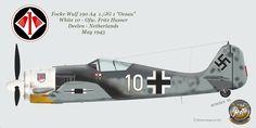 Fw190A4_1-JG1_Husser.png (1500×750)