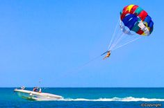 10 Best Attractions in Pattaya Beach - Best Places to See in Pattaya Beach Stuff To Do, Things To Do, Party Places, Pattaya, Bangkok, Places To See, Attraction, Adventure, City