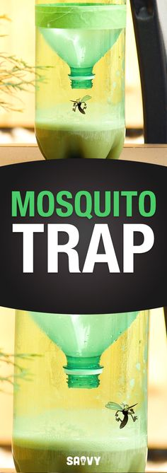 Get Rid Of Annoying Bugs With This Homemade Trap Need ideas to keep those pesky bugs away? Get rid of annoying insects with this easy-to-make trap! Grab a soda bottle, brown sugar, yeast and. Mosquito Spray, Diy Mosquito Trap, Mosquito Trap Homemade, Bug Trap, Keeping Mosquitos Away, Keep Bugs Away, Insecticide, Fly Traps, Soda Bottles