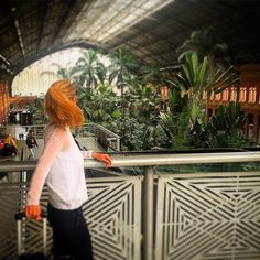 Next stop #alicante. Starting my working day #traveling to visit one of the best #wellness #hotels in the world. its a #pleasure to travel from this #beautiful and #green #madrid train station. Empezando mi dia #viajando a alicante a visitar uno de los mejores #hoteles #wellness del mundo. Un #placer viajar desde estaciones de tren tan #verdes y #bonitas. #madrid #trainstation #traveling #workingday #hotels #wellness #ecocosmetics #organicbussines #goodday by dianaburillo