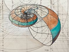 Rafael Araujo is raising funds for Golden Ratio Coloring Book on Kickstarter! A coloring book with a collection of Rafael Araujo's hand drawn Golden Ratio illustrations to reconnect with yourself and nature Golden Ration, Sacred Geometry Art, Fibonacci Spiral, Fibonacci Sequence Art, Blue Morpho, Sacred Architecture, Architecture Tattoo, Architecture Design, Tatoo Art