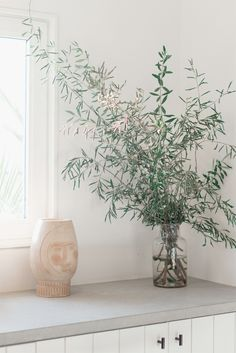 olive tree branch in glass vase inside the surfrider hotel malibu / sfgirlbybay