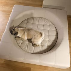 CUBE - dog bed - Real Leather.