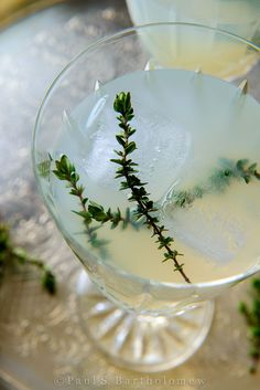 Vodka Thyme Cocktail - food photography by Paul S. Bartholomew.