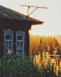 The village of Sherushevka, Sverdlovsk Region, Russia. Nature Aesthetic, Aesthetic Colors, House In Nature, Growing Gardens, Watercolor Landscape Paintings, Country Estate, Countryside, Nature Photography, Russia