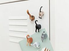 Astounding Kikkerland Cat Butt Magnets with an Amazing set of 6 Pieces Long Distance Best Friend, Cat Garden, Thing 1, Affordable Furniture, New Hobbies, White Elephant Gifts, Things To Buy, Cool Gifts, Besties