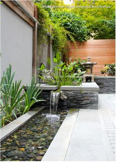 http://www.houzz.com/ideabooks/51142373/list/patio-details-dog-wont-trample-the-plants-with-this-design