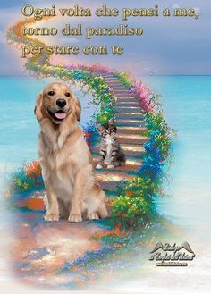 I will see you all again- a rainbow of cats plus Muffin, Jesse, Emma, Hayley and Sam. One beagle and four goldens. Dog Quotes, Animal Quotes, Beagle, Animals And Pets, Cute Animals, Pet Loss Grief, Pet Remembrance, Dogs And Puppies, All Dogs
