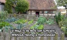 Self Sufficient Without Having a Homestead. It doesn't take 20 acres to be more self sufficient. Most can be done with minimal effort and for cheap