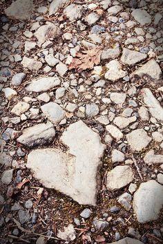 Loop jij het pad waar je hart ligt?