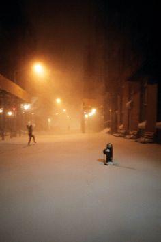 //adrianna galviano | brooklyn, NY snow storm 2010