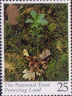 Centenary of National Trust 25p Stamp (1995) Oak Seedling